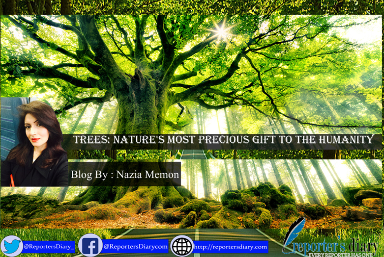 Trees: Nature's most precious gift to the humanity