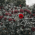 She Lives in the Garden by Tahir Mehmood