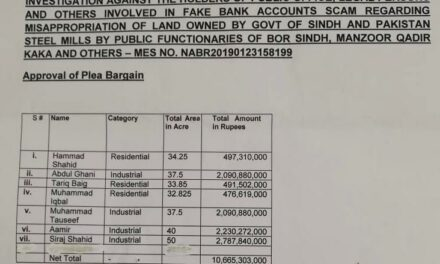 Fake accounts case: NAB accepted Rs10.6 bn plea bargain