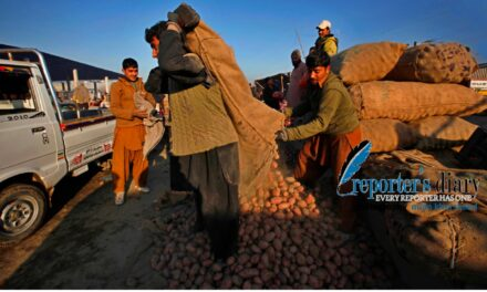 Export duty on Pakistani potatoes to be discussed with Afghanistan